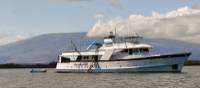 Explore the Galapagos Islands on the comfortable Beluga