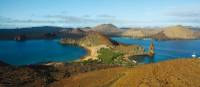 Explore the diverse ecosystem of the Galapagos Islands