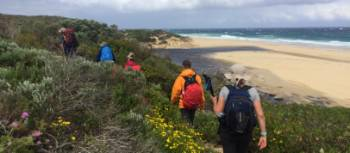 Walking the Cape to Cape Track in Western Australia